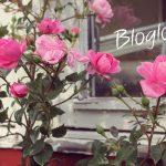 Agurketid // bloglove