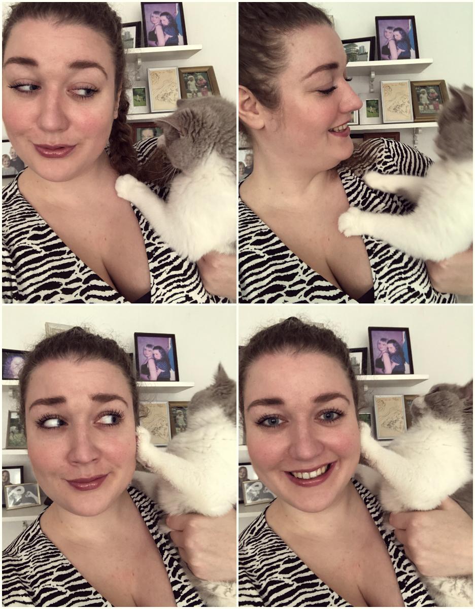 Man købte en kattekilling og fik en sabotør